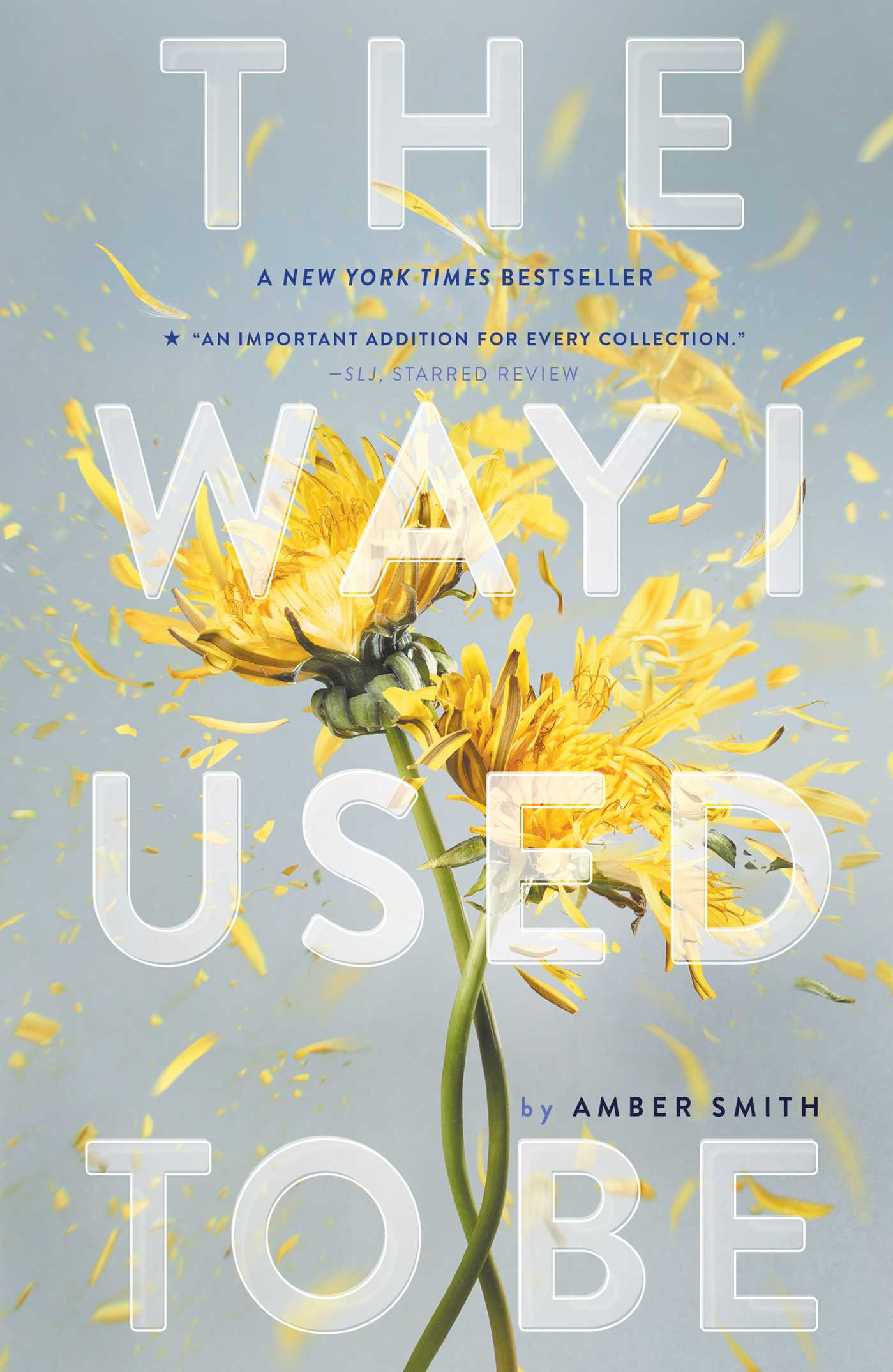 Way I Used to Be (The) | Novel