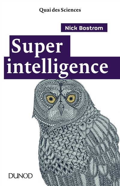 Superintelligence | 9782100764860 | Informatique