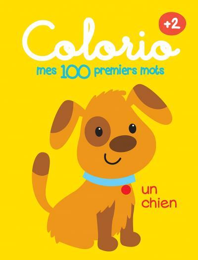 Mes 100 Premiers Mots 2 Un Chien 9789463342124 Livres