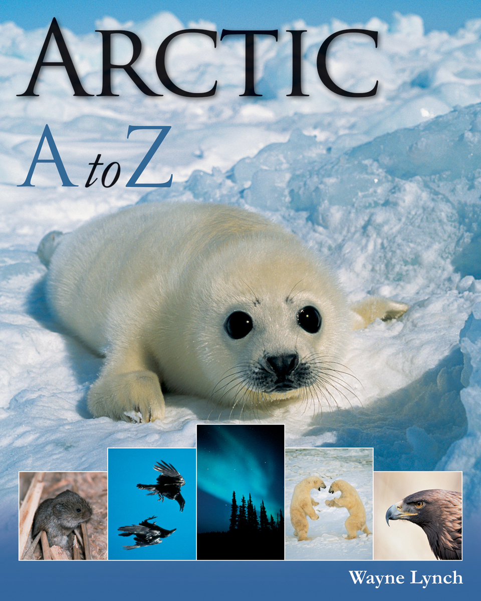 Arctic A to Z | Documentary