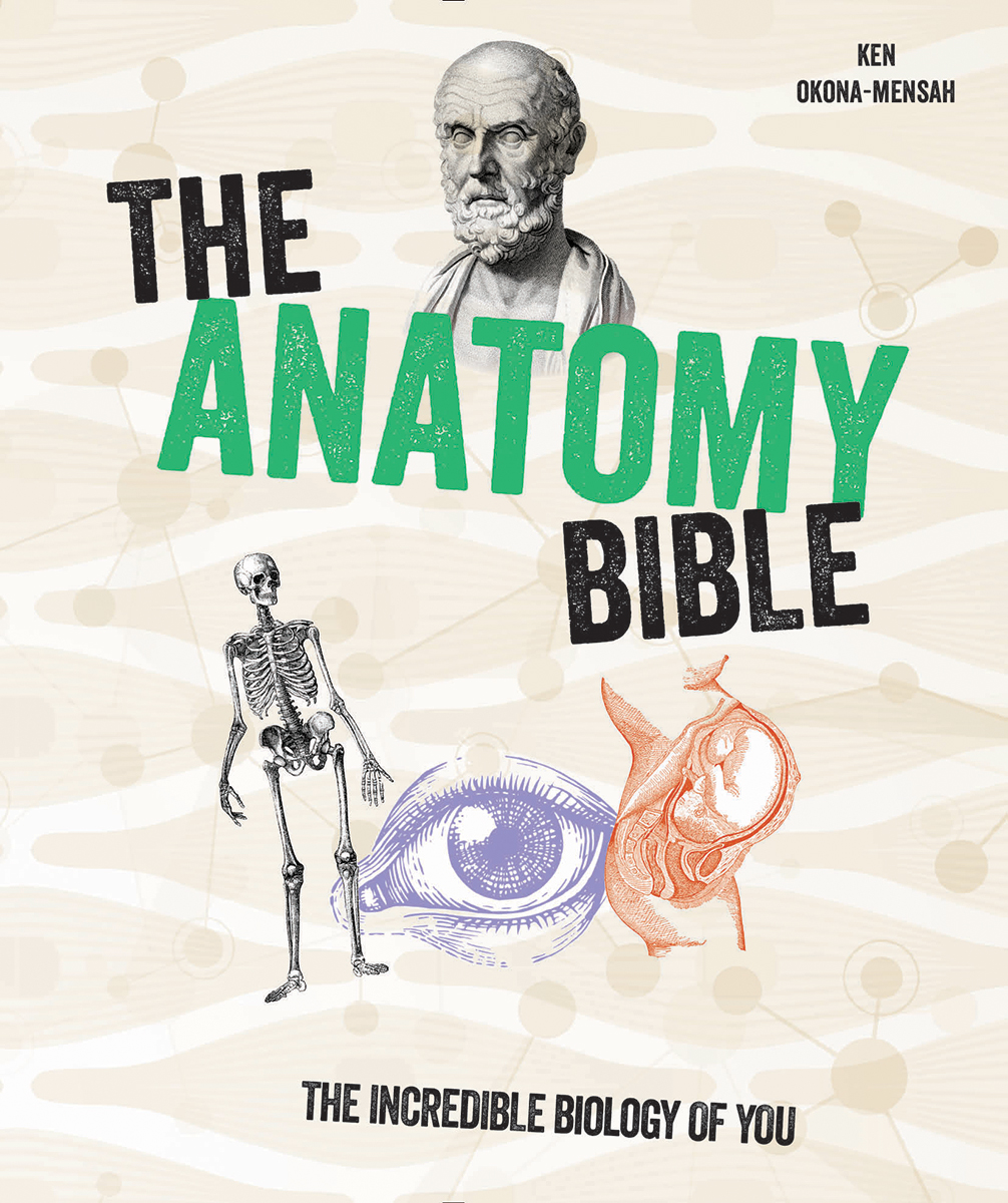 The Anatomy Bible : The Incredible Biology of You | Science