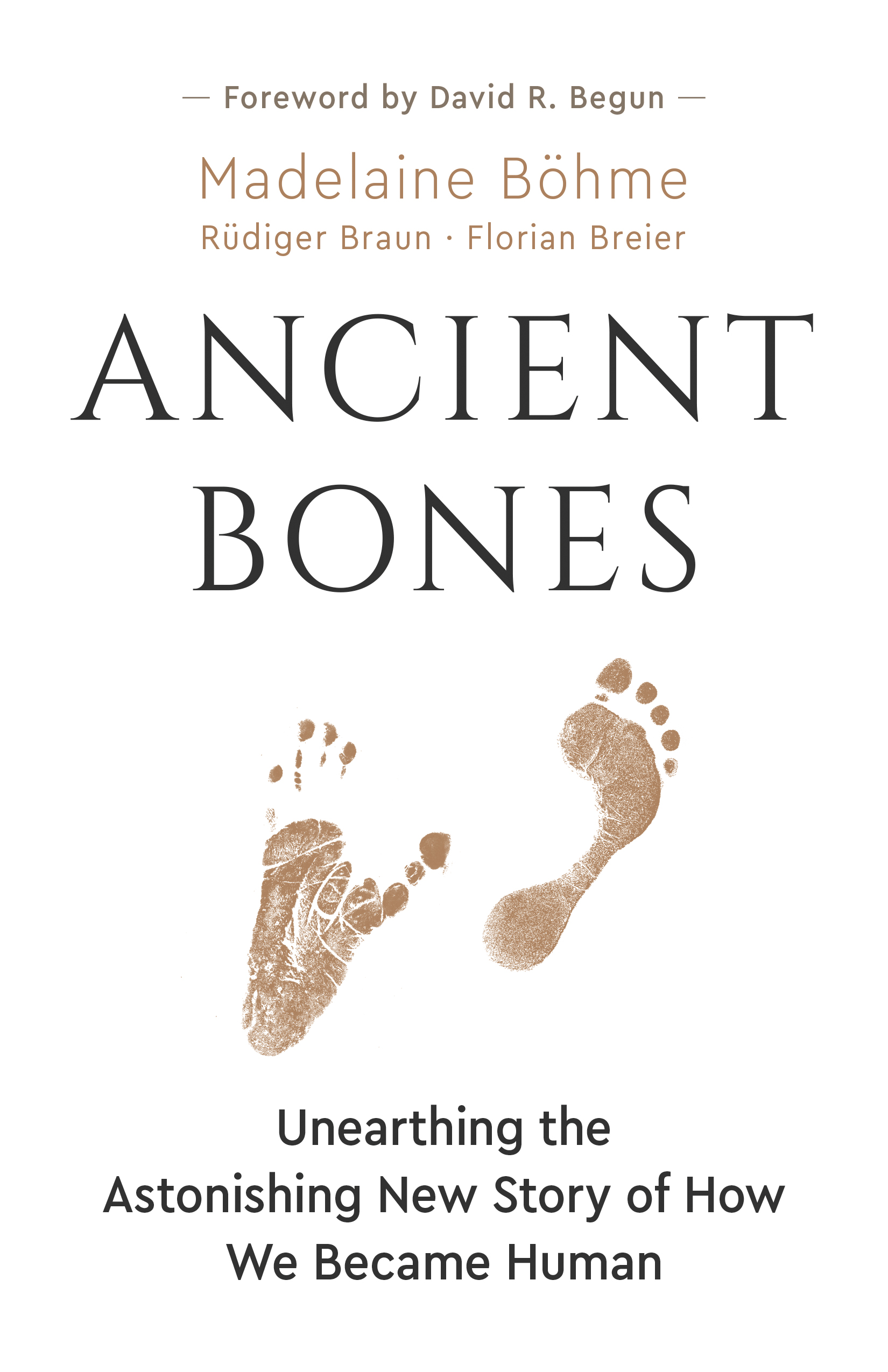 Ancient Bones : Unearthing the Astonishing New Story of How We Became Human | History & Society