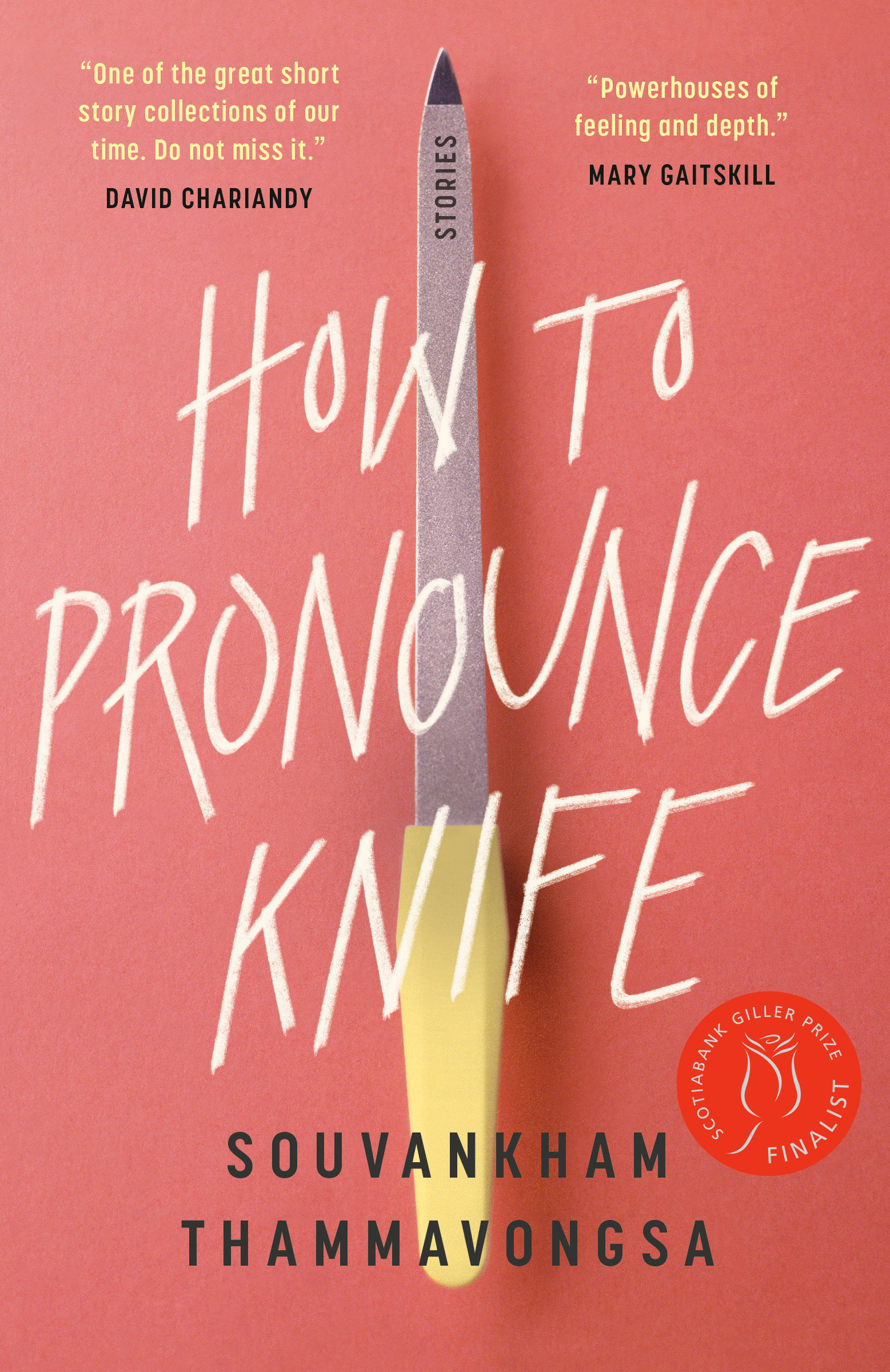 How to Pronounce Knife : Stories | Novel