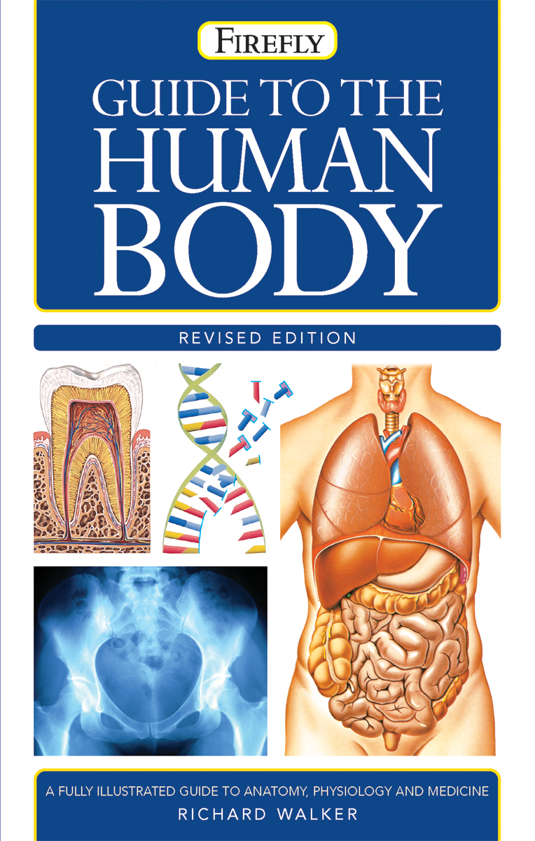 Guide to the Human Body | Health
