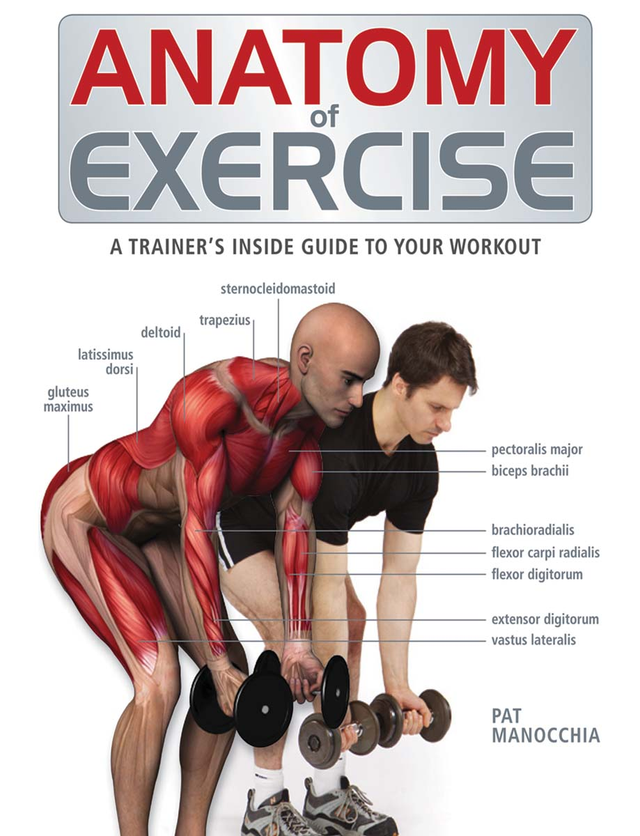 Anatomy of Exercise : A Trainer's Inside Guide to Your Workout | Health